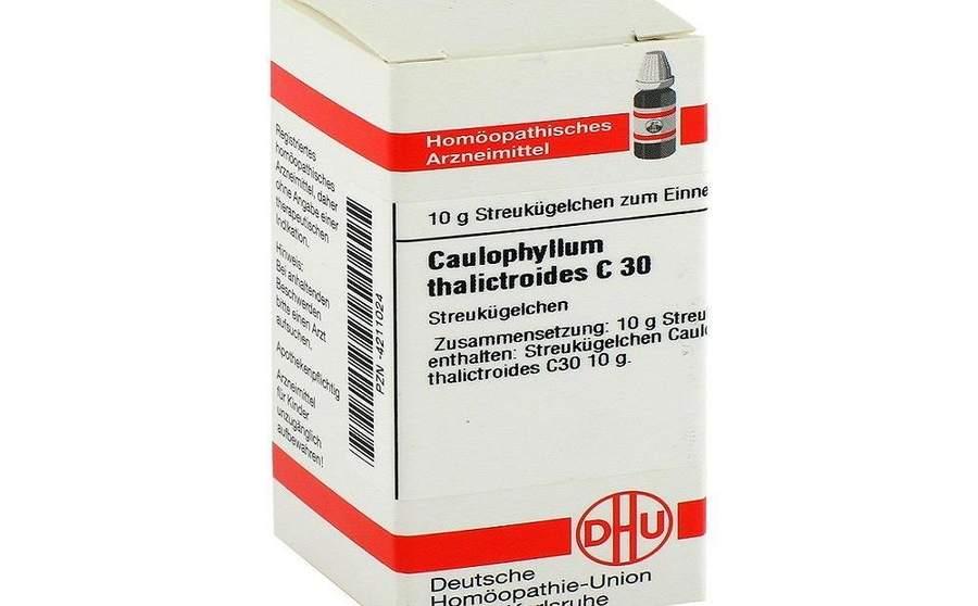 कोलोफाइलम ( Caulophyllum ) होम्योपैथिक दवा