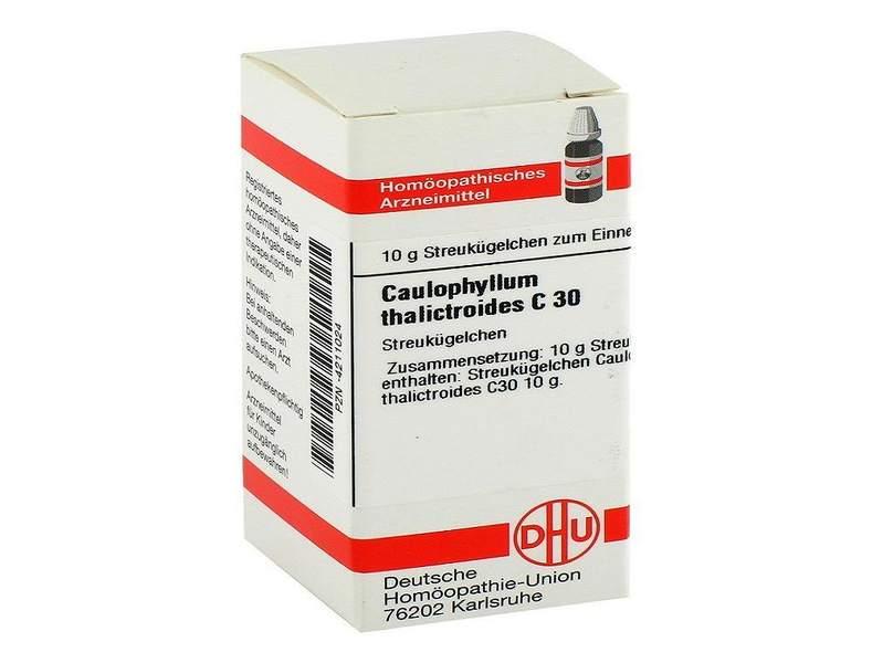 Caulophyllum homeopathic medicine