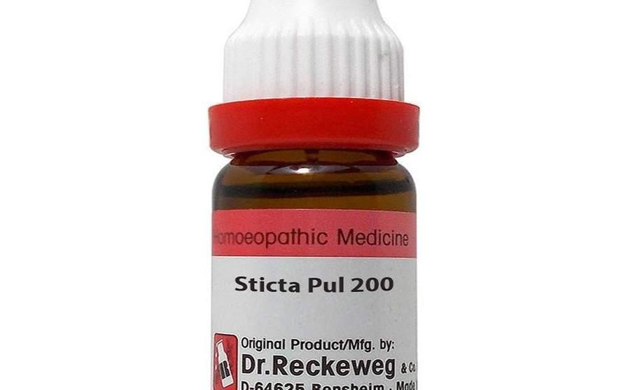 स्टिक्टा पल्मोनेरिया – Sticta Pulmonaria